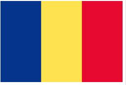 román fordítás